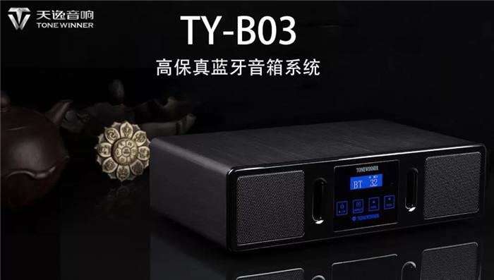 一款为HI-FI发烧友定制的便携蓝牙音箱天逸 TY-B03